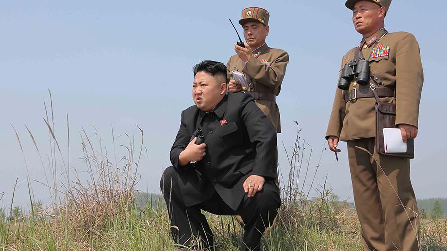 ВКНДР сообщили онамерении запустить еще несколько спутников