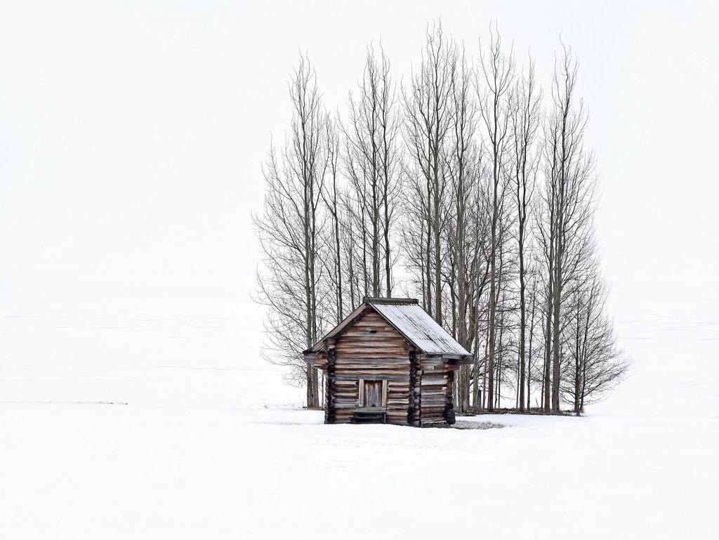 НаТверском бульваре откроется выставка Александра Львова «Русские сезоны. Кижи»