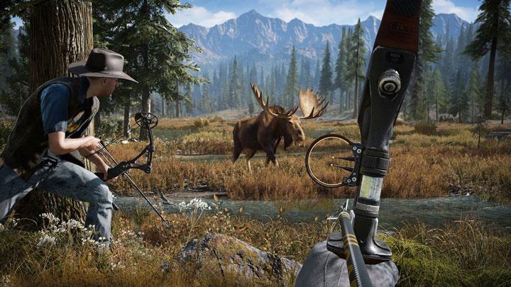 Ubisoft поведала осетевом режиме Far Cry 5