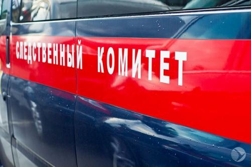 ВПензенской области шофёр автобуса попытался «отмазать» иностранцев уначальника милиции