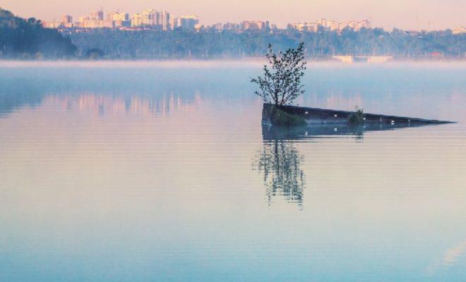 В Калуге определили победителей фотоконкурса «С любовью, Природа»