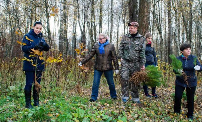 Калужане в Губернском парке высадили более 3 000 саженцев деревьев