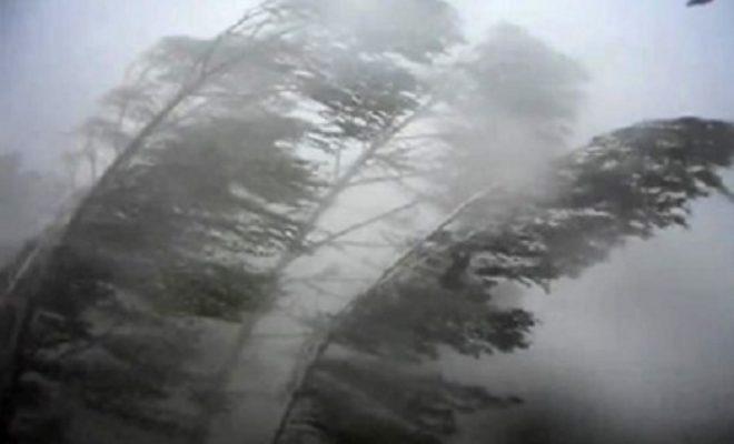 В Калуге два дня будет дуть сильный ветер