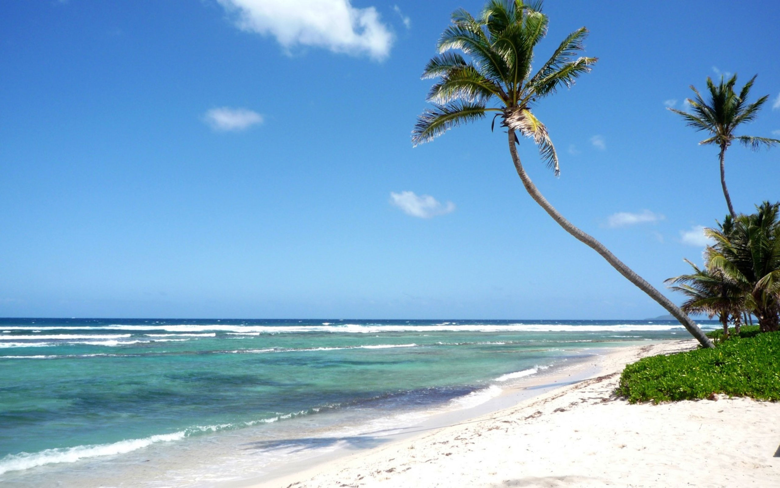 Что ждет туризм вКарибском регионе после ураганов?
