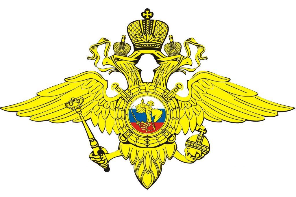 МВД выступило сзаявлением всвязи сакциями вроссийских городах