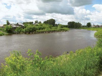 ВОмской области осудили мужчину, повине которого утонула супруга
