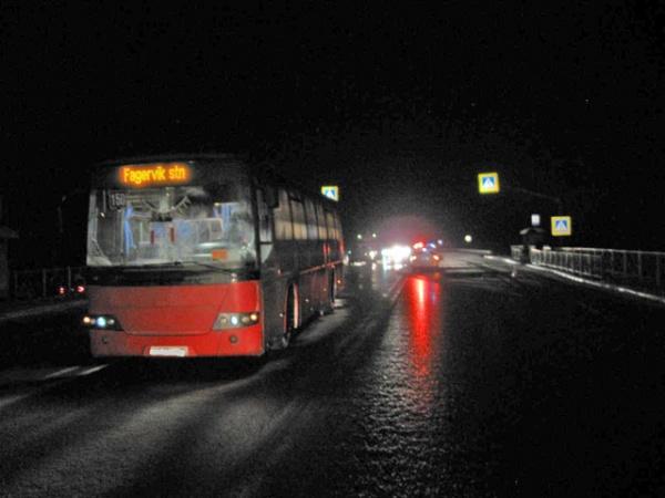 ВАрхангельской области двое местных граждан попали под колеса автобуса