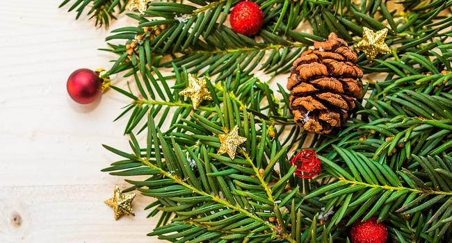 ВНью-Йорке зажгли огни на основной рождественской елке