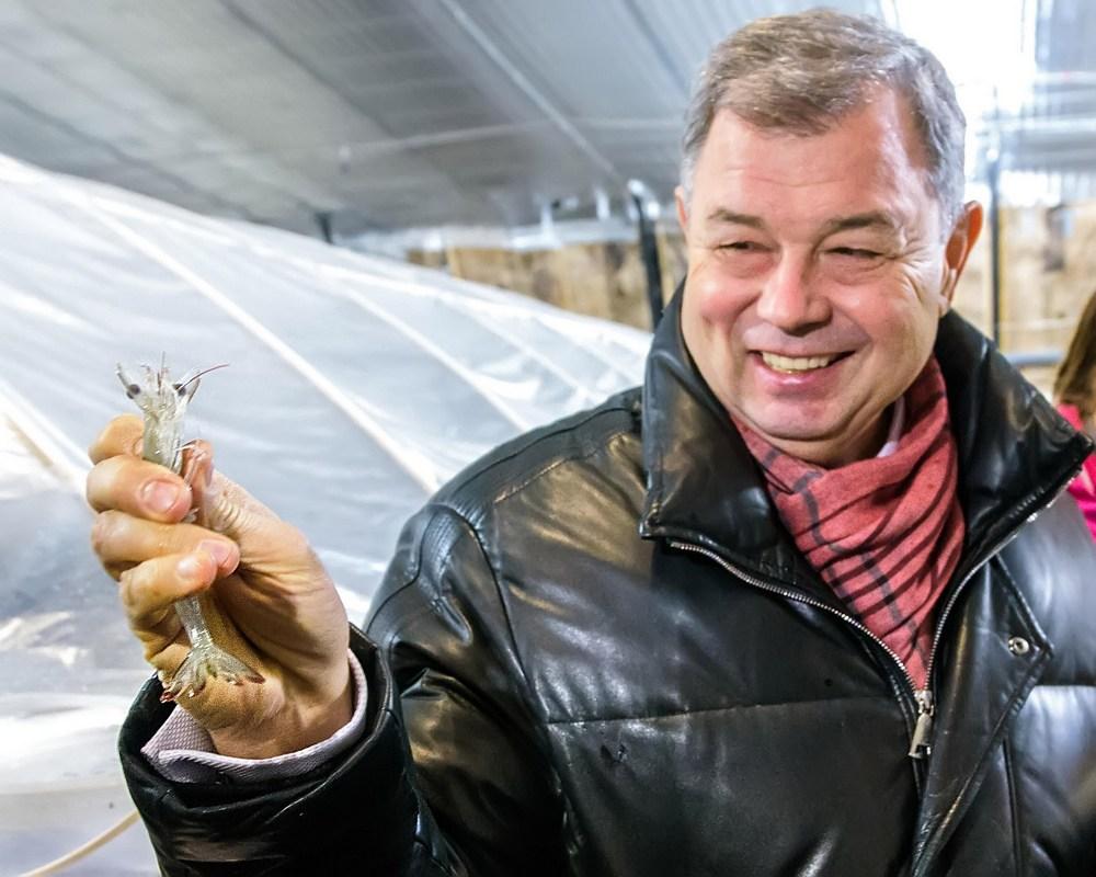 В Малоярославецком районе создадут питомник для королевских креветок