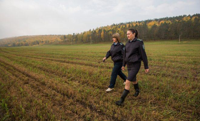 Более 2 миллионов рублей штрафов наложили на пользователей сельхозземель