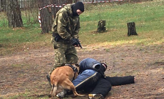 Полицейские с собакой искали наркотики в детском лагере