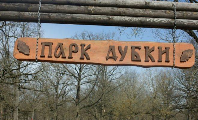 На территории памятника природы собирались строить дорогу протяженностью 2,5 километра