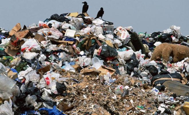 Несанкционированную свалку отходов обнаружили в Жуковском районе