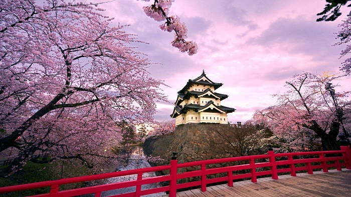 Япония планирует ввести турналог