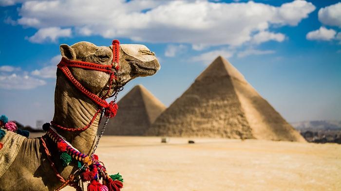 РФиЕгипет могут вдекабре подписать соглашение обавиасообщении