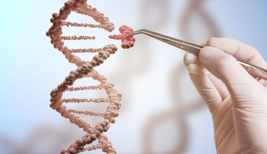 Экс-сотрудник NASA накачал мышцы при помощи генной инженерии