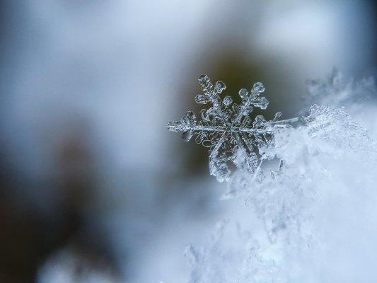 ВНижнем Новгороде полицейские закидали корреспондентов снежками