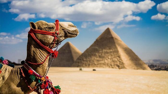 Египет близко?