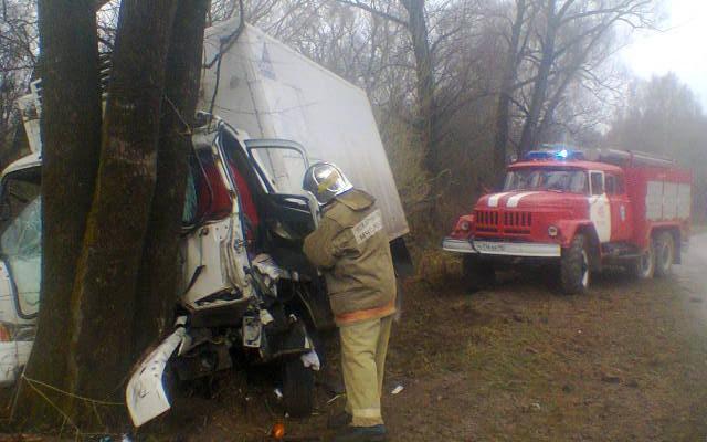 Грузовик врезался в дерево в Малоярославецком районе