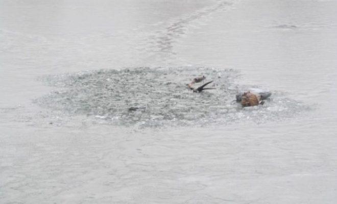 На озере Вырка утонул рыбак